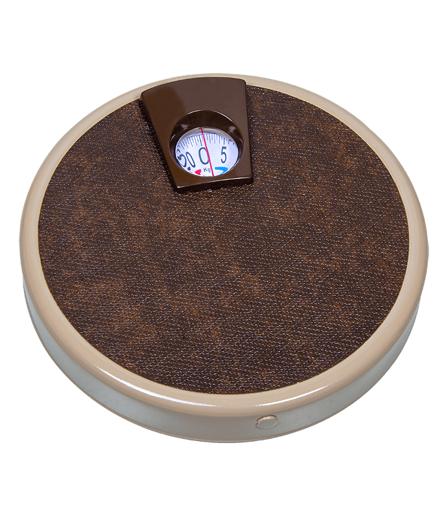 everest scales personal weighing scales dial scale